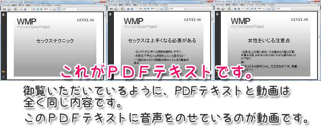 wmp-pdf